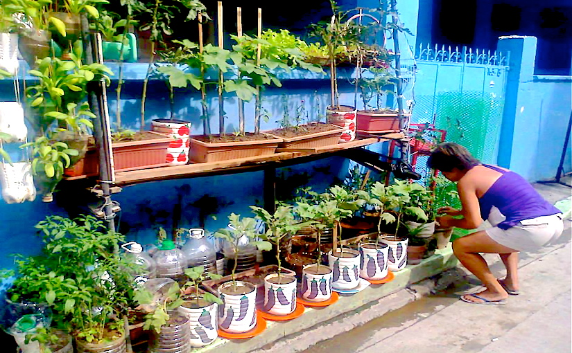 Crédit photo: * Containers - Photo Rosa Delima de Leon - 1010881_679717428709959_1857353899_n copy.jpg